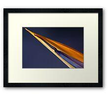 The beak 9608 Framed Print