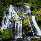 Panther Creek Falls IV by Tula Top
