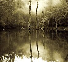 Eerie Lake by 1randomredhead