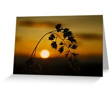 Harvest Sun Greeting Card