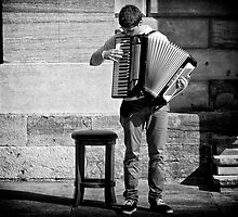 The Accordeon by lamiel