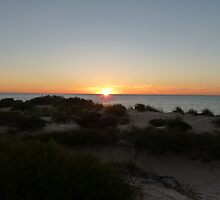 Monkey Mia Western Australia Sunrise #1 by Virginia  McGowan