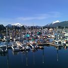 Last day in alaska 9/14/2011 by whyerle