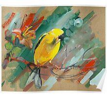 bird-o6 Poster