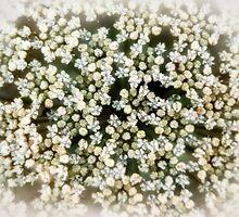 Bridal Secrets by Erica Yanina Lujan