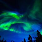 Northern Night Lights Dancing by Jarede Schmetterer