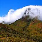 Climbing Bluff Knoll - Western Australia  by Akrotiri