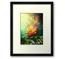 Juicy Rose Framed Print
