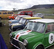 Minis at Baskerville by Wendy Dyer