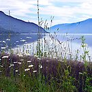 Kootenay Lake by George Cousins