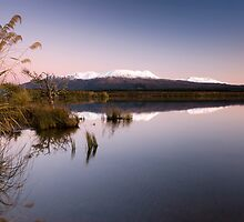The North Island Volcanic Plateau by Michael Treloar
