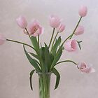 Pink Tulips by Penny Alexander