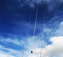 Kiting by Samuel  Dodd