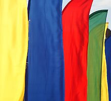 Rally Flags by TREVOR34