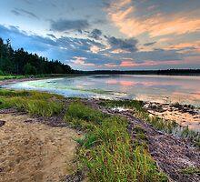 Sunset on the Salt Marsh by osprey-Ian