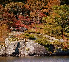 Autumn In The Muskoka's by jules572