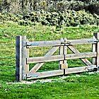 Gate by Els Steutel