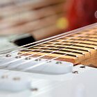 Guitar Fret by busterbrownbb