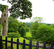Blarney Castle - Blarney, Ireland  by Kim North