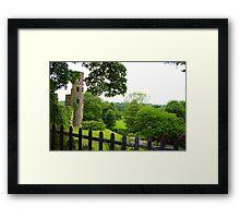 Blarney Castle - Blarney, Ireland  Framed Print