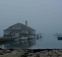 Harbor Fog by phil decocco
