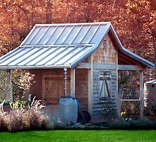 Garden Shed by Anthony M. Davis