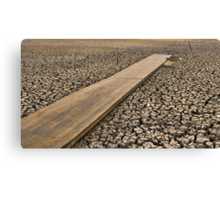 All Dried Up - Mudflats of Lake Wendouree, Ballarat Canvas Print