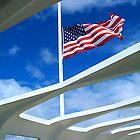 USS Arizona Memorial by Anthony M. Davis