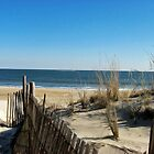 Cape Henlopen, DE by Bine
