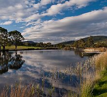 Puddleduck Winery by gamaree L