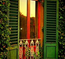 Golden Window Light by Barbara  Brown