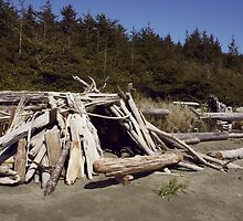 Driftwood Castle by Janice Chiu