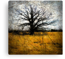 Desolate III Canvas Print