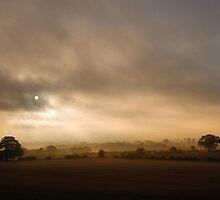 Mist & Fog by Simon Pattinson