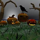 Pumpkin Patch by plunder