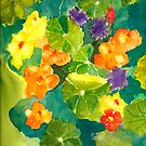 Nasturtiums I Have Known and Loved by Sally Griffin