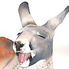 Laughing Kangaroo by Louise De Masi