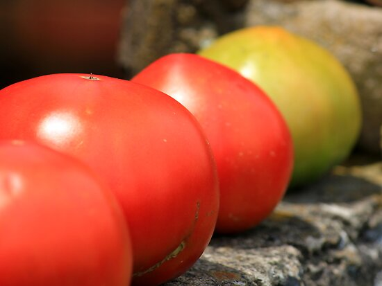 Tomatoes by Michael L. Colwell