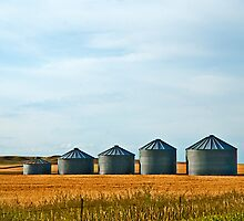 The Silo Family, Papa, Mama and the three kids by Bryan D. Spellman
