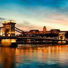 Szechenyi Chain Bridge and Royal Palace by fineartphoto1