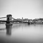 Szechenyi Chain Bridge and Royal Palace by fineartphoto1