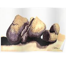 c11-Soft Boulders Poster