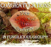 Banner challenge for Fungilicious by vigor