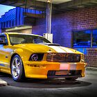 2008 Ford Shelby GT by JacoboMunguia