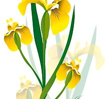 yellow iris flower design by Veera Pfaffli