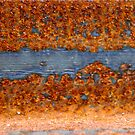 Rust with the Blues by Martha Andreatos