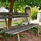 Waiting by the Grave by Martha Andreatos