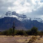 Superstition Snowfall by J. Michael Runyon