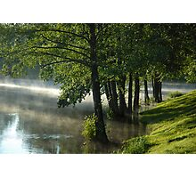 Trees in water at misty morning Photographic Print