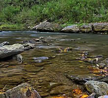 """ Ninemile Creek - Marcellus, NY "" by DeucePhotog"